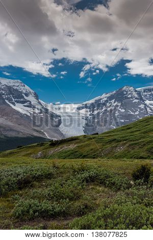 View of Athabasca Glacier from Wilcox Pass in summer