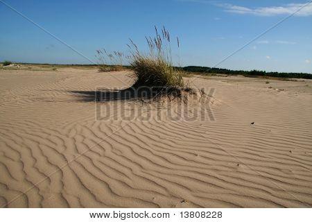 Small sand-drift in the desert