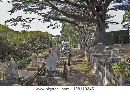 Wellington New Zealand - March 2 2016: Jewish cemetery at Bolton Street Memorial Park in the suburb of Thorndon