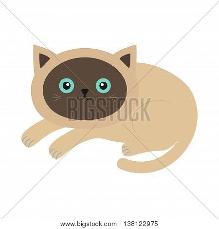 Lying siamese cat in flat design style. Cute cartoon character. Happy kitten with blue eyes. White background. Isolated. Vector illustration