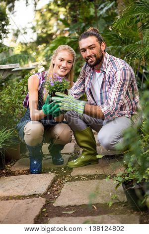 Portrait of happy young gardeners holding potted plant at community garden