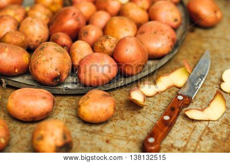 Freshly Dug Potatoes From A Garden. Metal Table With Potatoes. Close Up Shot Of  A Basket With Harve