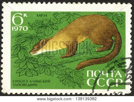 MOSCOW RUSSIA - DECEMBER 2015: a post stamp printed in the USSR shows an amimal
