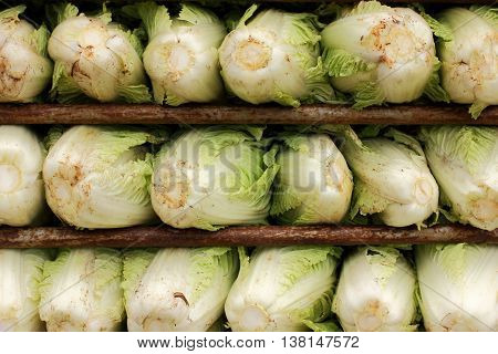 Fresh Chinese cabbage ready for sale, organic vegetable