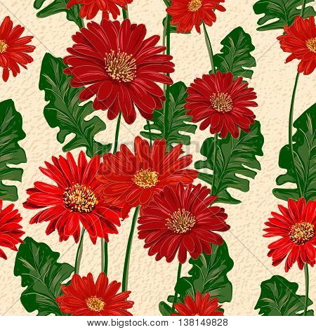 Gerbera hand drawn seamless pattern. Red flowers for wallpaper design