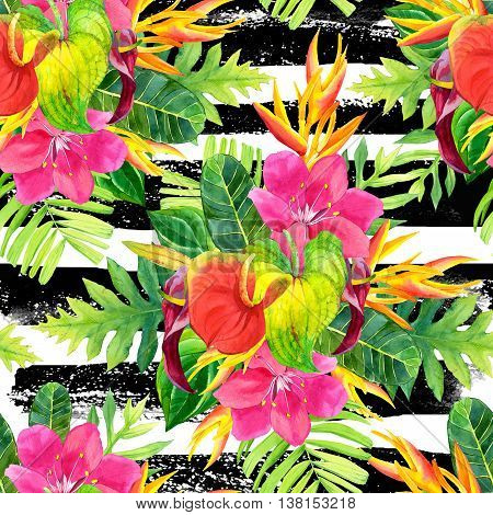 Beautiful pattern with tropical flowers and plants on striped black and white background. Composition with palm leaves anthurium and strelitzia.