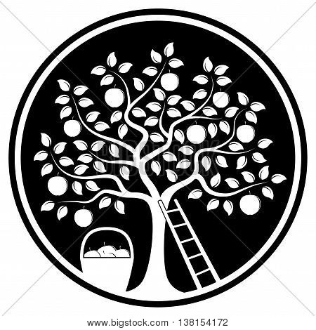 vector apple tree, ladder and basket of apples isolated on black round