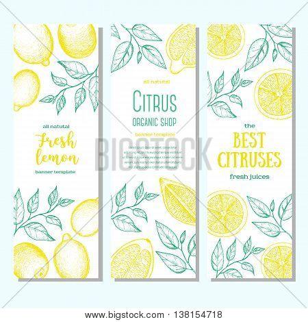 Citrus vertical banner collection. Lemons hand drawn in ink illustration. Vector vintage illustration. Line art graphic.