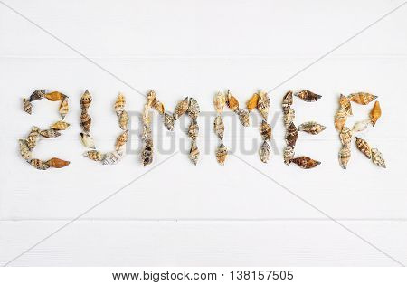 word SUMMER written with shells on wooden background