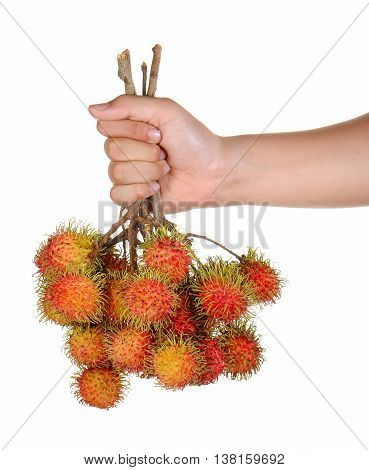Fresh rambutan bales in hand isolated on white background.