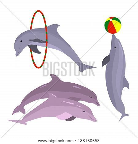 Playful dolphins. Dolphin set hand drawn. OceanAnimal