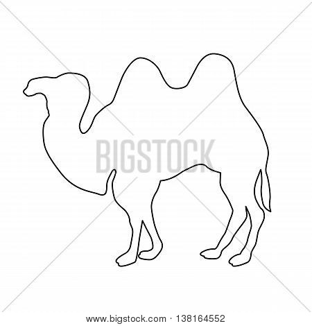 realistic camel black vector illustration line drawing