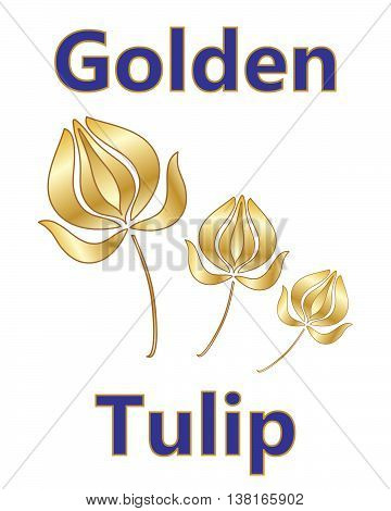 an illustration of a metallic golden tulip design with a stylized flower and blue and gold type on a white background