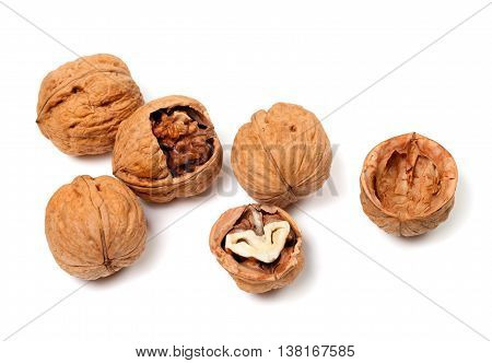 Walnuts isolated on the white background .