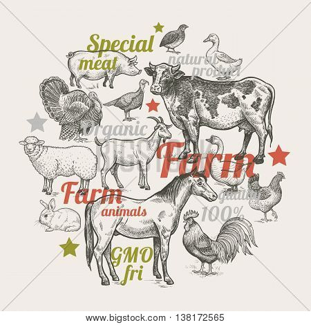 Vector illustration - color composition with various livestock poultry and inscriptions. Designed for shops of farm products advertising banners print on bags packaging wrapping paper.