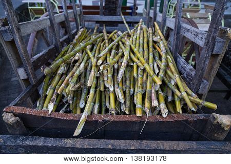 Cane Sugar On A Dare For Further Processing