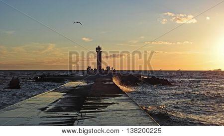 Sunset on Baltic Sea coast. Late summer evening 2016
