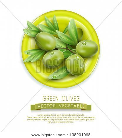 Vector branch with green olives lying on a plate, isolated on white background