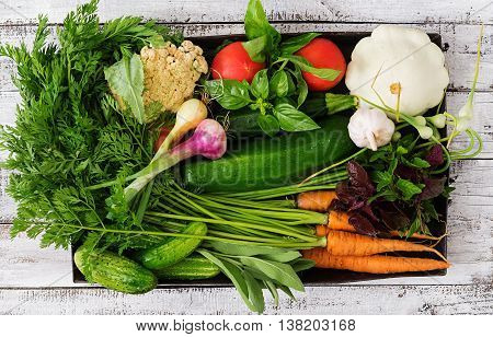 Set Of Different Fresh Vegetables (carrots, Zucchini, Cucumber, Tomato). Proper Nutrition. Dietary M