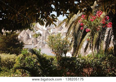 The town of Alberobello in Apulia seen through the branches of the public park - Apulia - Italy