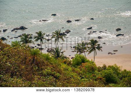 Arambol Beach. Palm Trees. Sea. Goa State, India.