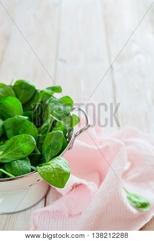 raw fresh spinach with drops in a colander on a rustic wooden tabler. colored. close up.