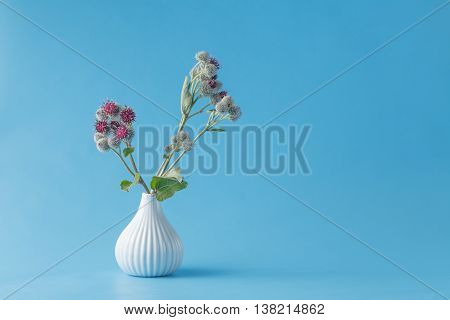 Burr Garbage Plant In Vase