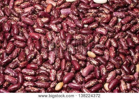 Haricot beans texture. The image can be used as a background.