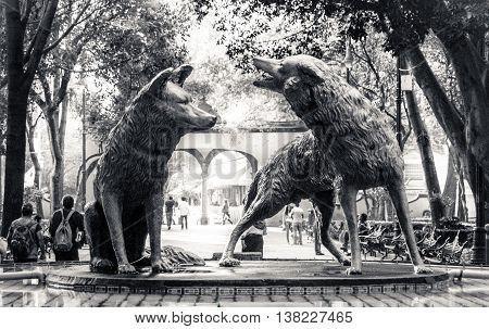 Coyotes Fountain In Coyoacan, Mexico City