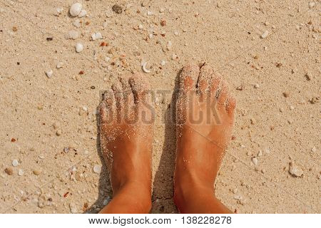 Woman's bare feet covered with sand on the beach.