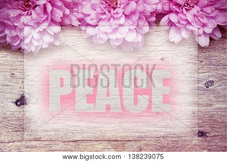 pink flowers on wooden with word PEACE