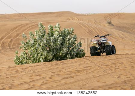 Off-road in the desert at the Bush