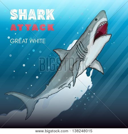 Shark attack great white shark underwater attack vector illustration