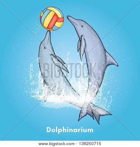 Two beautiful dolphin playing with a ball dolphinarium background vector illustration