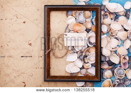 Sign Sea Adventure With Shells And Photo Frame. Vocation Background
