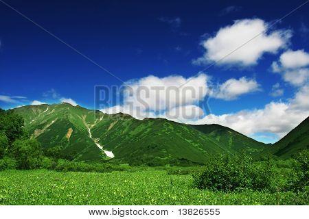 Grüne bergwiese auf Kamtschatka
