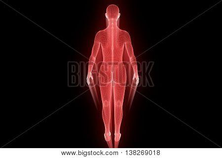 Female Human Wireframe Hologram. Nice 3D Rendering