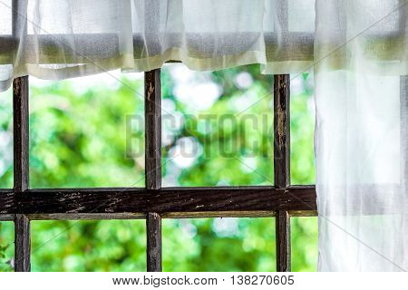 Window Of The Terrace