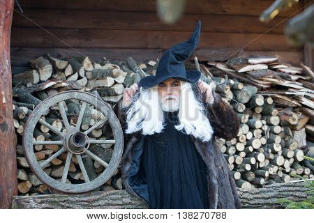 Old Man Druid And Woodpile