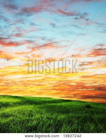 Morgen Grünland
