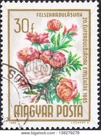 MOSCOW RUSSIA - CIRCA JANUARY 2016: a post stamp printed in HUNGARY shows flowers with the inscription