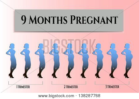 Beautiful pregnant, vector image with silhouette pregnant, infographics