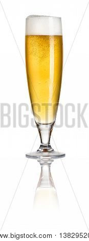 A Pilsner beer on a white background
