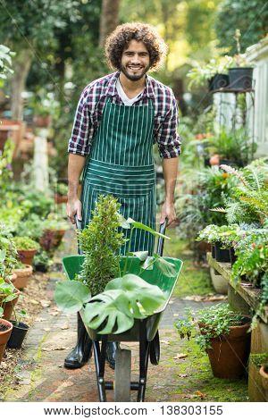 Portrait of male gardener carrying plants in wheelbarrow outside greenhouse