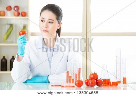 Asian Female Scientist Looking Tomato For Genetic Modification Research