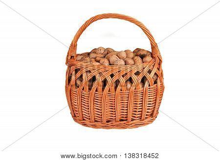 Walnut In A Wattled Basket