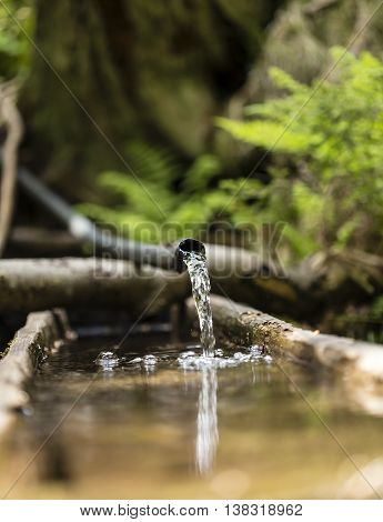 Water flowing from a plastic pipe in the nature.