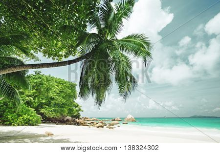 tropical Seychelles beach