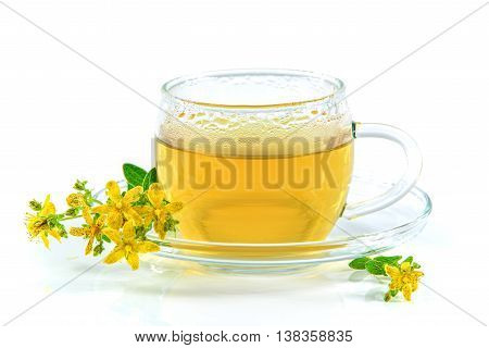Tea with St. John's wort in a glass cup isolated on a white background and the flowering hypericum herb
