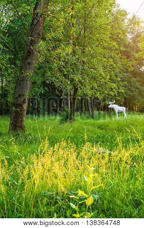 VELIKY NOVGOROD RUSSIA - MAY 21 2016. City stone sculpture of elk in the park of 30th October anniversary in spring sunset evening in Veliky Novgorod Russia - sculpture spring landscape